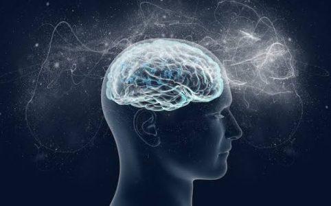 Memanfaatkan Internet Untuk Membantu Meningkatkan Kecerdasan Otak
